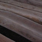 Close up view of green oak purlins
